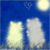 avatar_MaRabbit