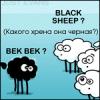 avatar_barmas
